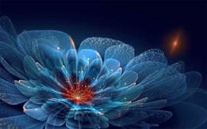 flori-fractale-5